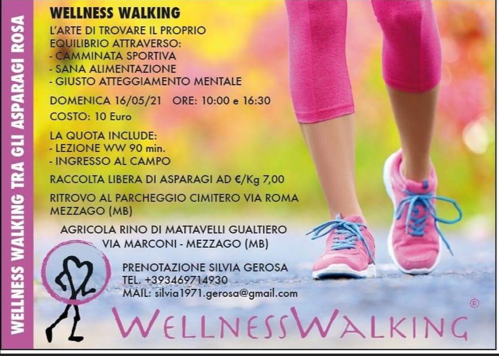 WELLNESS WALKING @ Parcheggio Cimitero di Mezzago (MB) | Mezzago | Lombardia | Italia